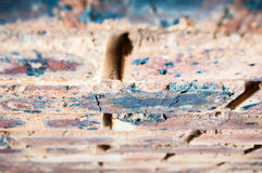 Brown Brick Wall. Closeup blur Royalty Free Stock Images