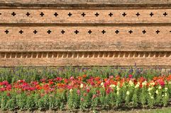 Brown brick wall.Flower garden Stock Image