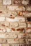 Brown brick wall Royalty Free Stock Photo