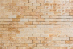 Brown Brick wall. With sharp edge brick Stock Photography