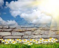 Brown brick wall texture background Stock Photos