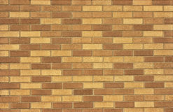 Brown Brickwall Fotografia Stock Libera da Diritti
