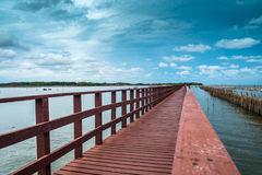 Brown bridge and bamboo line slow down wave prevent coastal eros. Ion Royalty Free Stock Photography