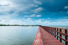 Brown bridge and bamboo line slow down wave prevent coastal eros. Ion Stock Photography