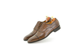 Brown brogue oxford Stock Image