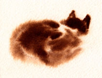Brown Brooding Cat. A watercolour painting of a brown brooding cat Royalty Free Stock Photography