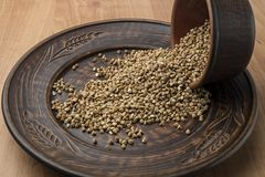 Buckwheat in a clay bowl. Brown buckwheat in a clay pot on the table Stock Photo