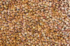 Brown Buckwheat Royalty Free Stock Photography