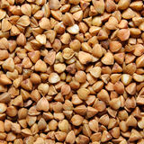 Brown buckwheat grains Royalty Free Stock Photo
