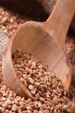 Brown buckwheat groats macro spill out of a wooden spoon. Stock Photos