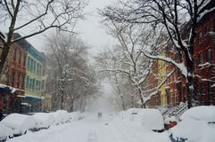 Brown Buildings and Back Bear Trees Covered With Snow during Daytime Royalty Free Stock Images