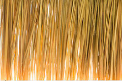 Bulrush. Brown bulrush is weave line form natural stock image