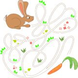 Brown bunny with carrot Stock Photos