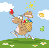 Brown bunny participating in an easter egg hunt. Happy brown easter rabbit running with a basket and egg background Stock Photos