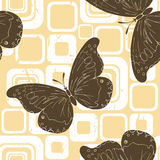 Brown butterflies Royalty Free Stock Photo