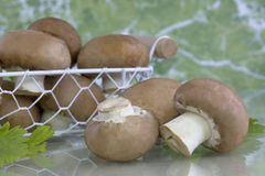 Brown button mushrooms Royalty Free Stock Images
