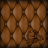 Brown Buttoned luxury leather Royalty Free Stock Image
