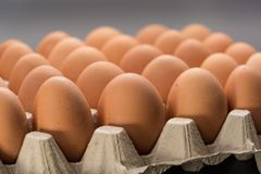 Free Brown Cage-free Chicken Eggs Stock Image - 111938511