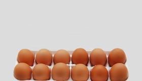 Brown Cage Free Healthier Eggs. A Carton of brown cage free healthy brown eggs on a white bakcground Stock Photos