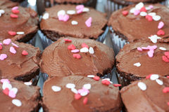 Brown cakes Stock Image