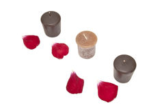 Brown candles. With rose petals isolated on white background Royalty Free Stock Photography
