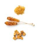 Brown cane sugar, cube sugar and crystalic sugar. Stock Image