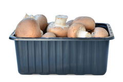 Brown cap cremini mushrooms in plastic box isolated Royalty Free Stock Photography