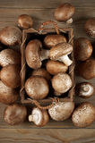 Brown cap mushrooms in basket Royalty Free Stock Photo