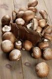 Brown cap mushrooms in basket Stock Photos