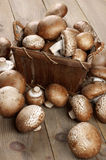 Brown cap mushrooms in basket Royalty Free Stock Images