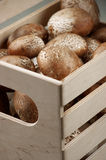 Brown cap mushrooms in box Stock Photos