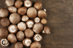 Brown cap mushrooms Stock Photos