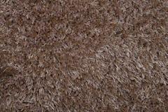 Brown carpet Stock Images