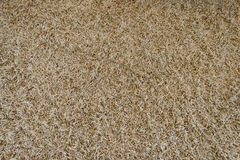 Brown carpet with long pile Royalty Free Stock Photography