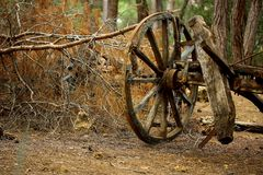 Brown Carriage Wheel royalty free stock image