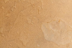 Brown carton cardboard paper Royalty Free Stock Images