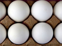Brown Carton Eggs. Farmers market fresh eggs for sale with brown carton Royalty Free Stock Photography