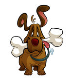 Cartoon dog with a big bone. A brown cartoon dog, standing and having in its mouth a huge bone while drooling Stock Image