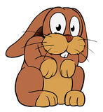 Brown cartoon rabbit. Looking at you with his eyes wide open, as if caught in the headlights of an oncoming car Royalty Free Stock Image