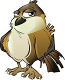 Brown Cartoon Sparrow. Isolated on White Background vector illustration