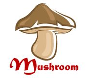 Brown cartooned forest mushroom. Close up brown cartooned forest mushroom isolated on white background Royalty Free Stock Photography