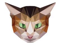 Brown cat low polygon. With green eyes Stock Illustration