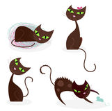 Brown cat series in various poses 2 Stock Photo