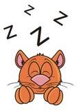 Brown cat sleeps Stock Photos