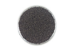 Brown catalyst pellets Royalty Free Stock Photo