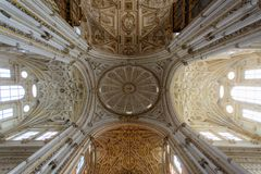 Brown Ceiling Ornate Painting Stock Images