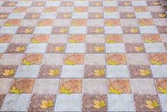 Brown ceramic floor tiles closeup texture. Outdoors Royalty Free Stock Images