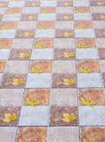 Brown ceramic floor tiles closeup texture. Outdoors Royalty Free Stock Photography