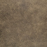 Brown chamois texture Stock Images
