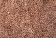 Brown chamois texture. The Image can be used as a background Royalty Free Stock Photos